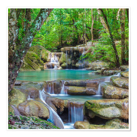 Premium poster  Small waterfall in a forest