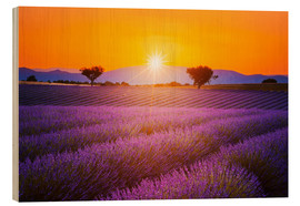 Wood print  Sun over lavender