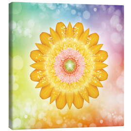 Canvas print  Mandala, love and light - Dolphins DreamDesign