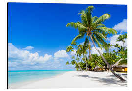 Aluminium print  Palm beach in the South Pacific with white sand and blue sea - Jan Christopher Becke