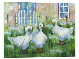 Foam board print  Geese in the grass - Jitka Krause