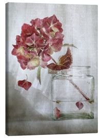 Canvas  Still life with Hydrangea - Mandy Disher