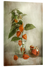 Acrylic print  Still life with Physalis - Mandy Disher