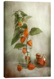 Canvas  Still life with Physalis - Mandy Disher