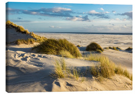 Canvas print  Landscape with dunes on the North Sea island Amrum - Rico Ködder
