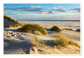 Premium poster  Landscape with dunes on the North Sea island Amrum - Rico Ködder