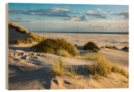 Wood print  Landscape with dunes on the North Sea island Amrum - Rico Ködder