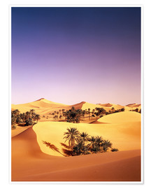 Premium poster Palm grove in Algeria
