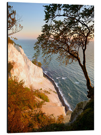 Aluminium print  Chalk cliffs of Møns Klint - Andreas Vitting