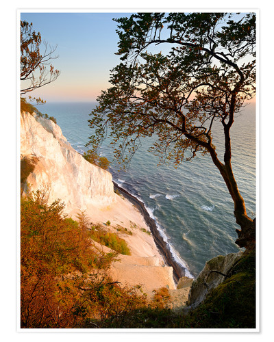 Premium poster Chalk cliffs of Møns Klint