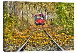Canvas  Train drives away from the photographer - Harald Schön