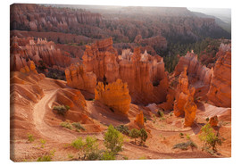Canvas  Bryce Canyon National Park, Vereinigte Staaten, Thors Hammer - Catharina Lux