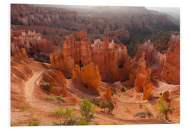 Foam board print  Bryce Canyon National Park, Vereinigte Staaten, Thors Hammer - Catharina Lux
