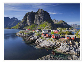 Premium poster Reinefjordens red cottages