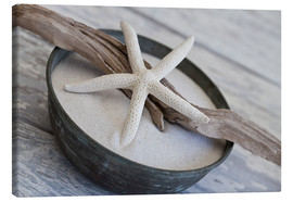 Canvas print  Starfish package - Andrea Haase Foto