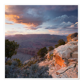 Premium poster Lipan Point, Grand Canyon National Park