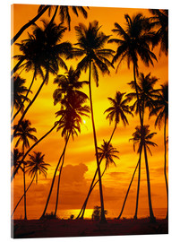 Acrylic glass  Palm trees in the sunset - Thonig