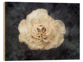 Wood print  White rose superimposed with floral texture - Alaya Gadeh