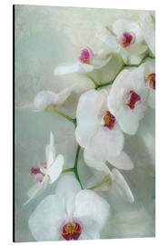 Aluminium print  Composition of a white orchid with transparent texture - Alaya Gadeh
