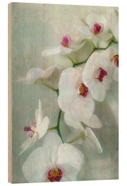 Alaya Gadeh - Composition of a white orchid with transparent texture