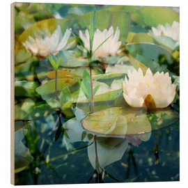 Wood print  Montage of white water lilies - Alaya Gadeh