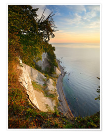 Premium poster Chalk cliffs in the morning light