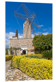 Foam board print  Windmill in Serra de Tramuntana, Mallorca - Chris Seba