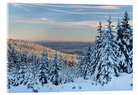 Acrylic glass  Winter evening on the Great Winterberg - Andreas Vitting
