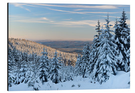 Aluminium print  Winter evening on the Great Winterberg - Andreas Vitting