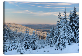 Canvas print  Winter evening on the Great Winterberg - Andreas Vitting