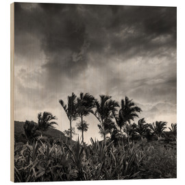 Wood print  A stormy tropical scene in paradise of Brazil. - Alex Saberi