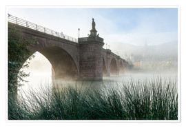 Premium poster  Neckar and Old Bridge in Heidelberg in autumn - Jan Christopher Becke