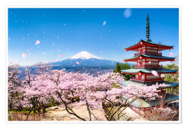 Premium poster  Chureito Pagoda and Mount Fuji in spring, Japan - Jan Christopher Becke