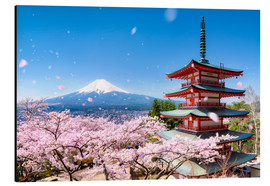 Aluminium print  Chureito Pagoda and Mount Fuji in spring, Fujiyoshida, Japan - Jan Christopher Becke