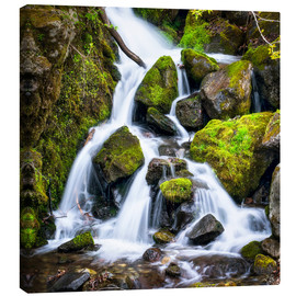 Canvas print  Waterfall in the forest near Triberg, Black Forest - Jan Christopher Becke