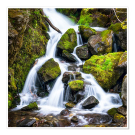 Premium poster  Waterfall in the forest near Triberg, Black Forest - Jan Christopher Becke