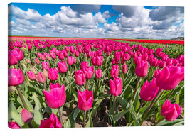 Canvas  Beautiful dutch Field of pink tulips - Remco Gielen