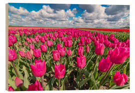 Wood print  Beautiful dutch Field of pink tulips - Remco Gielen