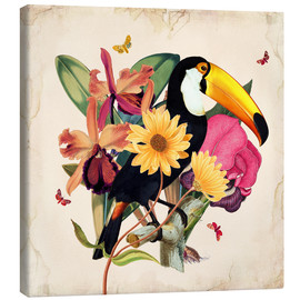 Canvas  Oh My Parrot XII - Mandy Reinmuth