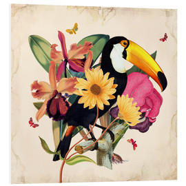 Foam board print  Oh My Parrot XII - Mandy Reinmuth