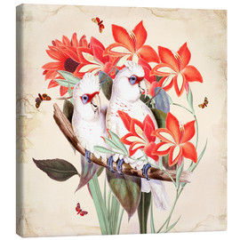 Canvas print  Oh My Parrot XI - Mandy Reinmuth