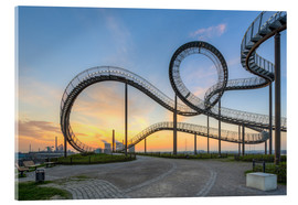 Acrylic print  Tiger and Turtle Duisburg - Michael Valjak