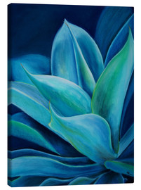 Canvas print  agave - Monica Schwarz