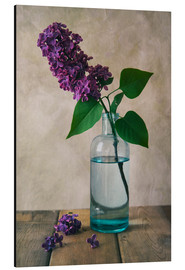Alu-Dibond  Still life with fresh lilac flower - Jaroslaw Blaminsky