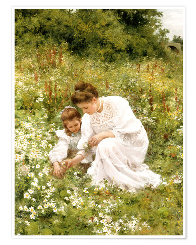 Premium poster When picking daisies