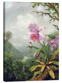 Canvas  Hummingbird Perched on an Orchid Plant - Martin Johnson Heade