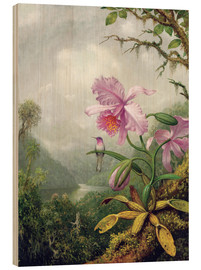 Wood print  Hummingbird perched on an Orchid Plant - Martin Johnson Heade