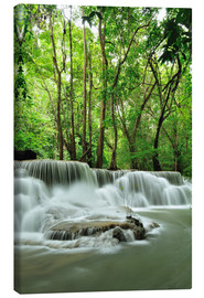 Canvas print  Waterfall in forest of Thailand