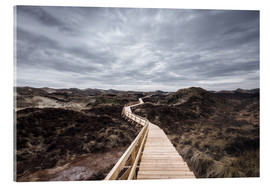 Acrylic print  Island routes on Amrum - Oliver Henze