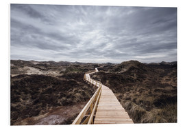 Forex  Island routes on Amrum - Oliver Henze
